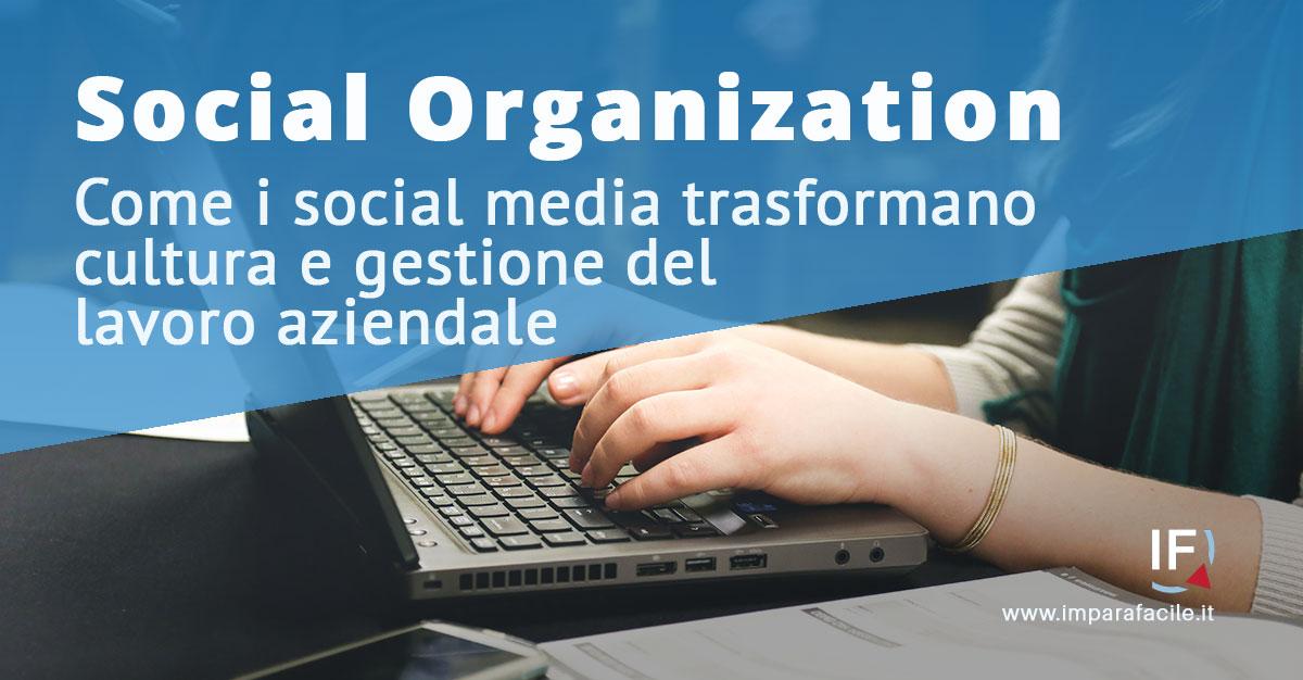 social organization social media in azienda